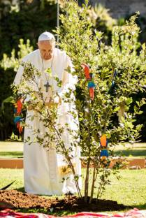 ROME, ITALY - OCTOBER 04: Pope Francis plants a tree as he celebrates the Feast of St. Francis of Assisi at the Vatican Gardens on October 04, 2019 in Rome, Italy. During a highly symbolic tree-planting ceremony in the Vatican Gardens on Friday, Pope Francis places the upcoming Synod for the Amazon under the protection of Saint Francis of Assisi. (Photo by Giulio Origlia/Getty Images)